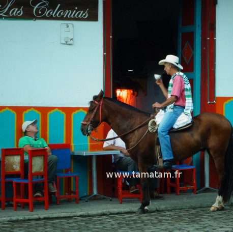 Colombie Jardin Homme Cheval
